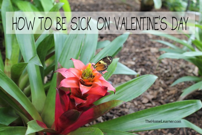How to be sick on Valentine's Day
